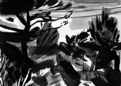 Les pins 1-14082011-kaai-2016-inkt op papier-30x40cm