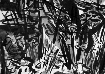 Nabij de Tarn tussen Montjeux en Viala du Tarn 2-14082195-kaai-2017-inkt op papier-30x40cm