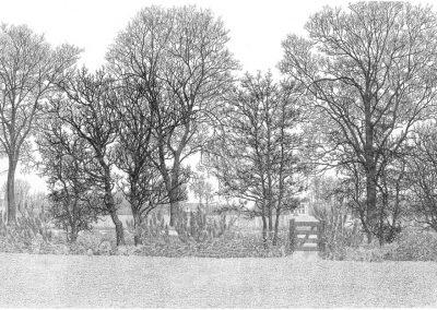 Landschap-met-hekje_960